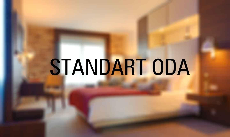 STANDART DOUBLE ODA